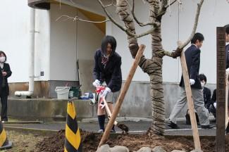 3年間の感謝を込めて植樹をしました