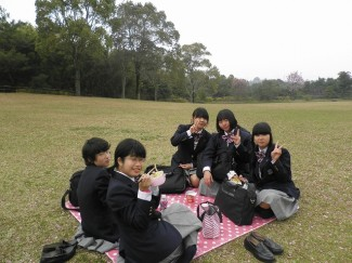 錦江湾公園で食事をとりました