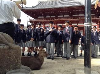 東大寺で鹿とパシャリ