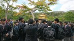 装飾が見事な金閣寺を見学しました。
